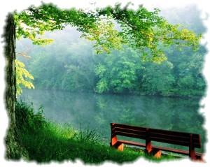 serenity-bench